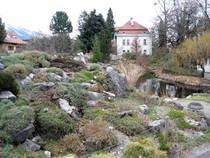 Botanischer Garten Innsbruck